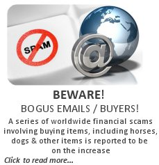 Beware of Bogas Emails and Buyers