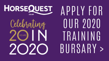 "HorseQuest Intro- 2020<span class=""sr-only"">; opens in a new window </span>"