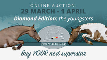 "Horse Auction Belgium April 2021<span class=""sr-only"">; opens in a new window </span>"