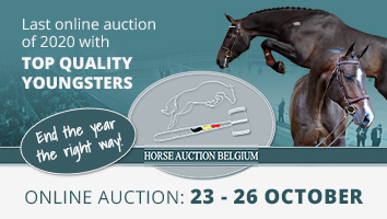 "Horse Auction Belgium Oct 2020<span class=""sr-only"">; opens in a new window </span>"