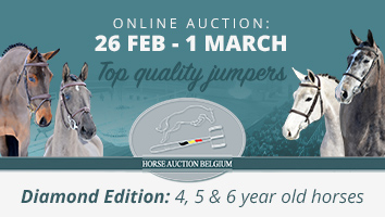 "Horse Auction Belgium<span class=""sr-only"">; opens in a new window </span>"