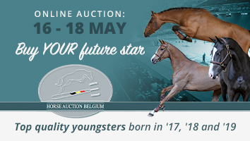 "Horse Auction Belgium Intro May 2021<span class=""sr-only"">; opens in a new window </span>"