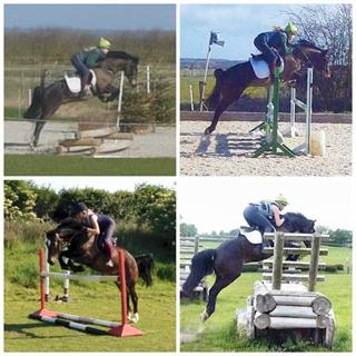 Talented pony with lovely scopey jump