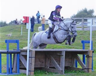 Fantastic Connemara jumping pony