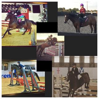 Super 138 jumping mare / PC allrounder