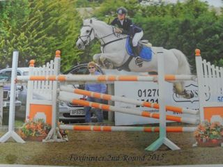 BIG TRACK JUMPING PONY