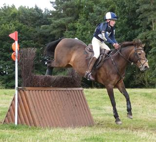 WANTED TETRATHLON / HUNTING / PONY CLUB SCHOOLMASTER