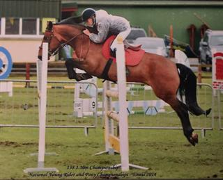 138 showjumping pony