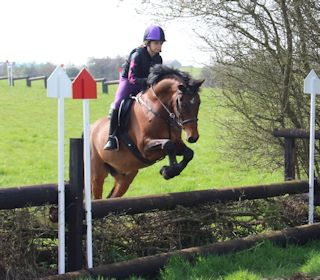 Super Smart PC Pony / Competition Pony / WHP