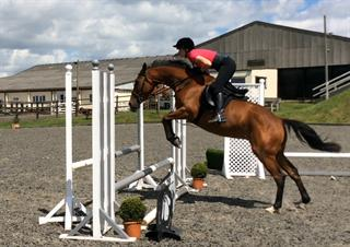Future Superstar Eventer