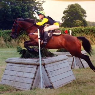 Jumping / Pony Club Pony