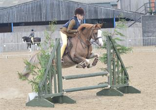 Scopey 13hh M&M / Plaited WHP / PC Pony