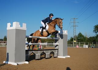 Extremely scopey and honest 148 jumping pony