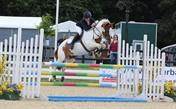 Talented Show jumping Pony
