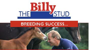 "Horses for sale from the Billy Stud<span class=""sr-only"">; opens in a new window </span>"